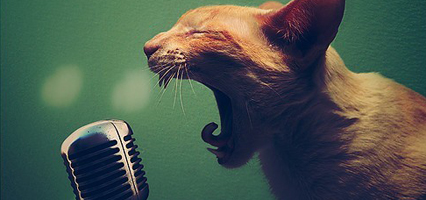 protecting your voice for voice over